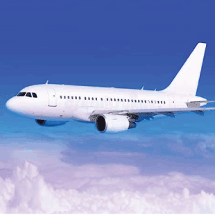 avion-310